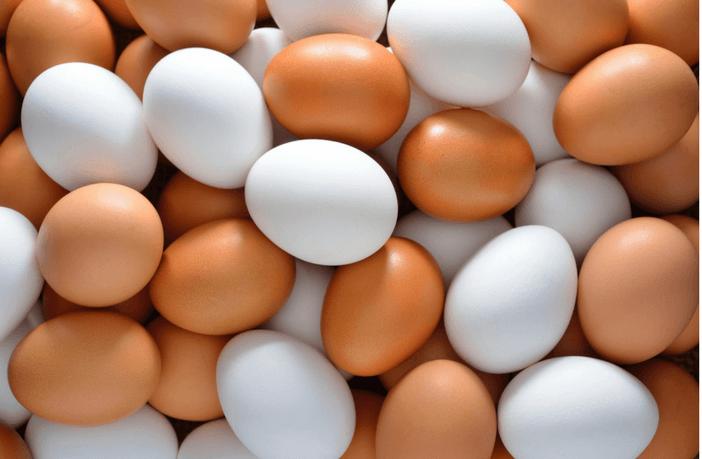 egg source livestrong
