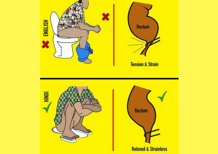 comparison of western and indian toilet