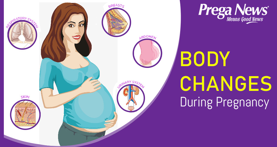 Major Changes In The Body During Pregnancy