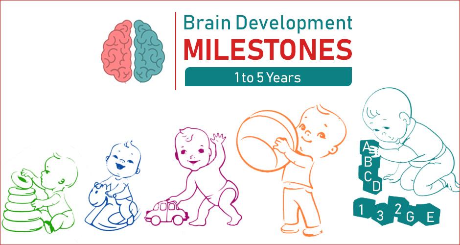 Brain Development Milestones in Children in the first 5 years