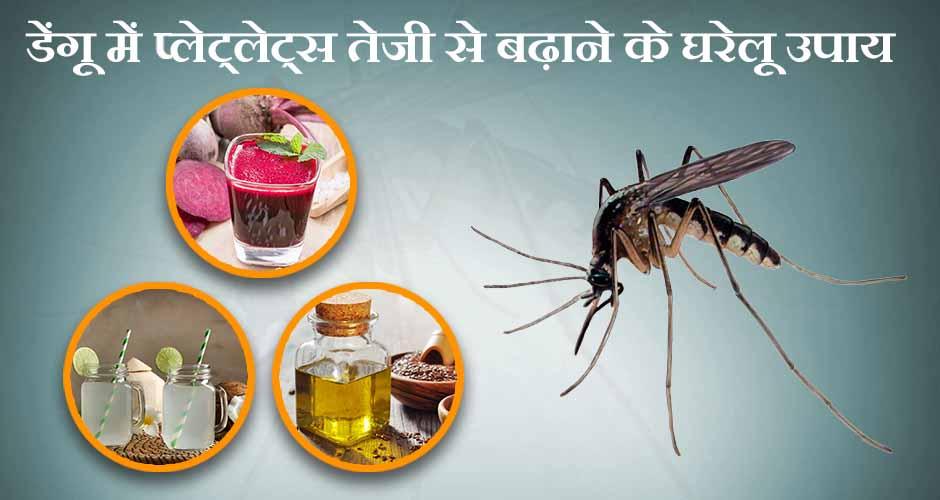 डेंगू में प्लेट्लेट्स तेजी से बढ़ाने के घरेलू उपाय